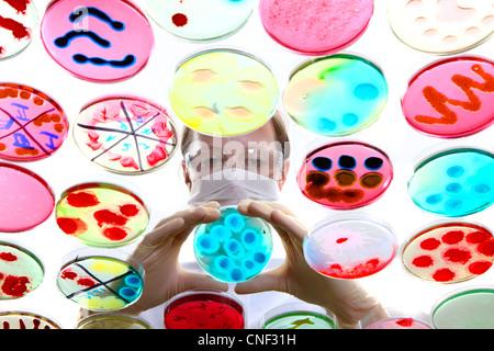 Laboratorio, biológicas, químicas. Análisis de cultivos bacterianos de bacterias que crecen en placas de petri.