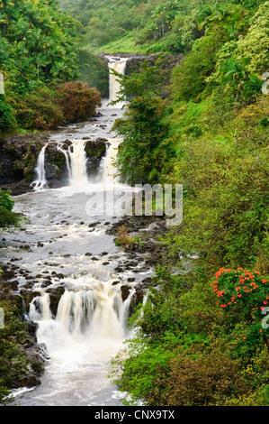 Umauma Falls, Estados Unidos, Hawai, Jardín Botánico, Mundo Hilo