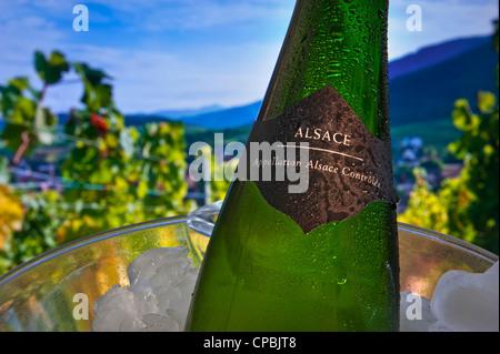 Cerrar ver etiqueta de botella de vino de Alsacia en wine cooler Riquewihr villa vinícola y viñedos en el fondo Alsace Francia