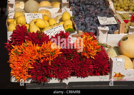 Pimientos para la venta en el mercado de Rialto, Venecia, Italia