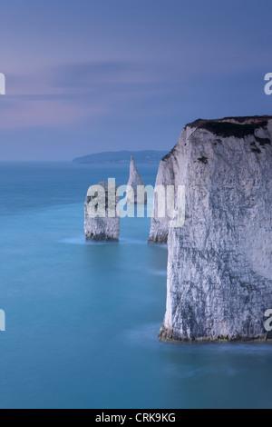Los acantilados blancos en Studland, Isla de Purbeck, la Costa Jurásica, en Dorset, Inglaterra, Reino Unido. Foto de stock