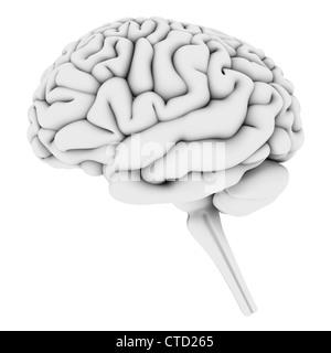 Arte de cerebro