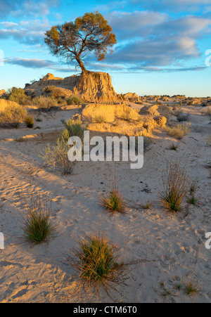 Patrones de arena en las dunas en las murallas de la China en el Parque Nacional Mungo, New South Wales, Australia