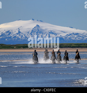 Cabalgatas en Longufjordur, Snaefellsjokull glaciar en el fondo de la península de Snaefellsnes, Islandia