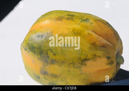 Papaya dos tipos de papayas son cultivadas comúnmente. Uno tiene dulce, rojo (o orangish) carne, y el otro tiene una pulpa amarilla