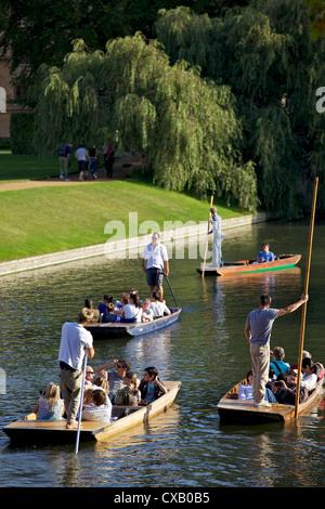 Navegar en las espaldas, Río Cam, Clare College, Cambridge, Cambridgeshire, Inglaterra, Reino Unido, Europa