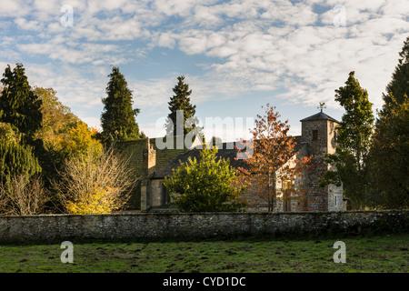 Ovejas pastando en Gregory's Minster cementerio, Kirkdale, North Yorkshire, Inglaterra Foto de stock