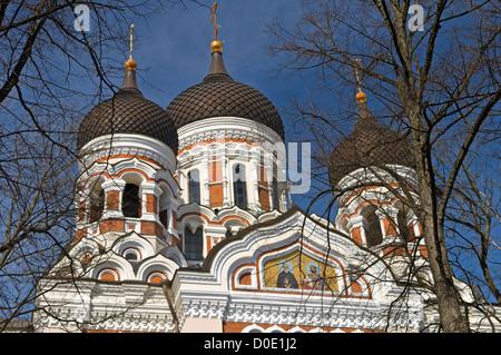 La Catedral de Alexander Nevsky Toompea Tallinn Estonia