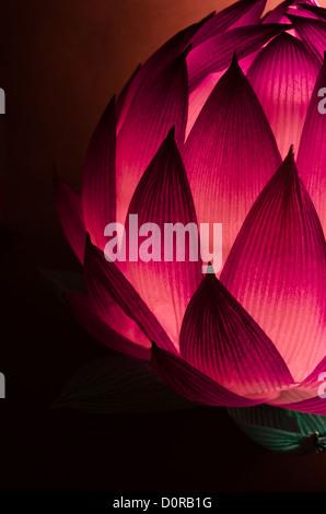 Lotus chino linterna para mediados del Festival de Otoño en tonos fríos