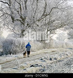 Invierno tiempo mujer caminando perro en el camino de campo en el campo ejercicio temprano por la mañana para perros hiar heladas en hedgerow rural Paisajes Essex Inglaterra Reino Unido