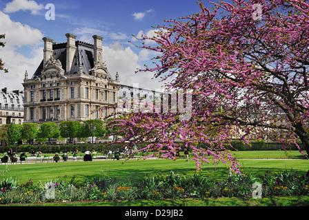 Francia, Ile de France, en París, el Jardin des Tuileries y el Museo del Louvre.