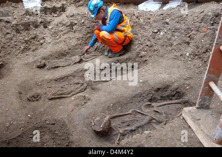 Imagen promocional: Londres, Reino Unido. El 15 de marzo de 2013. Descubrimiento de la Muerte Negra cementerio que datan del siglo XIV por el plomo travesaño arqueólogo Jay Carver. Crédito: Travesaño/Amer Ghazzal/Alamy Live News