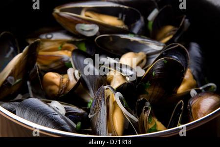Moules Marinieres, mejillones con ajo y hierbas en una salsa de vino blanco y crema