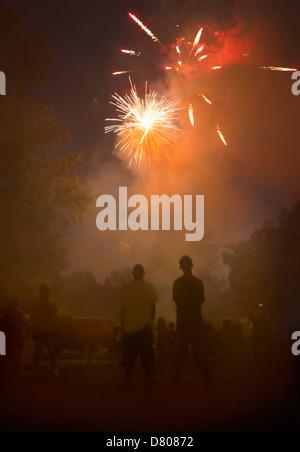 Personas viendo los fuegos artificiales en el cielo de la noche