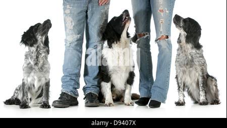 Familia con perros - el marido y la esposa con tres perros aislado sobre fondo blanco.