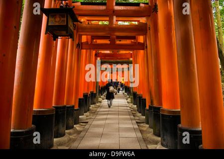 Las interminables puertas rojo de Kioto de Fushimi Inari shrine, Kyoto, Japón