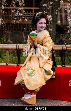 Geisha Real posando ante un árbol de cerezo en flor en el barrio de Geisha de Gion en Kyoto, Japón