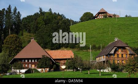 Apple tree, granja, granja de madera, la colina de montaña, techo, Emmental, casa, casa, chalet, corte, patio, Hofstatt, colina, cantón