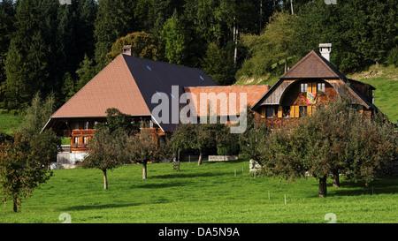 Apple tree, granja, granja de madera, oso de Berna, techo, Emmental, bandera, casa, casa, chalet, corte, patio, Hofstatt, cantón de Berna.