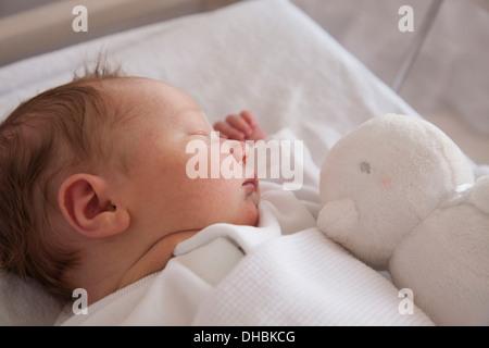 Un bebé recién nacido acostado sobre la espalda, durmiendo. Un juguete en su cuna.
