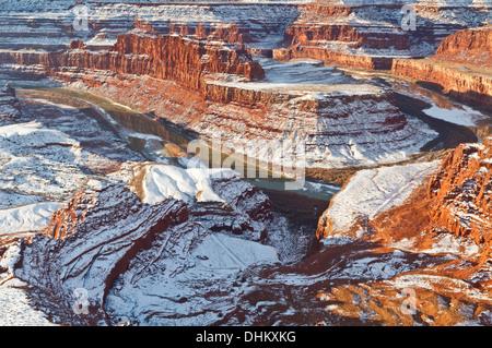 Una mesa de cuello de cisne refleja parcialmente congelada en el Río Colorado, visto de Dead Horse Point vistas en Utah.
