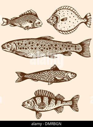 Pescado vintage
