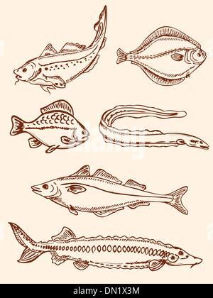 Retro peces de agua salada