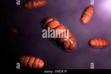 Imagen conceptual de las mitocondrias.