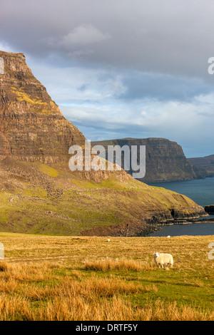 Una vista hacia Ramasaig Waterstein Head y acantilados, Moonen Bay, Isla de Skye, Inner Hebrides (Escocia, Reino Unido, Europa. Foto de stock