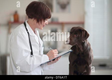 Veterinario hembra haciendo notas de examen en portapapeles