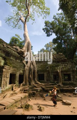 Ta Prohm Templo. Viajar con niños. Grandes árboles torre Ta Prohm anteriormente, sus hojas filtrar la luz solar, Foto de stock