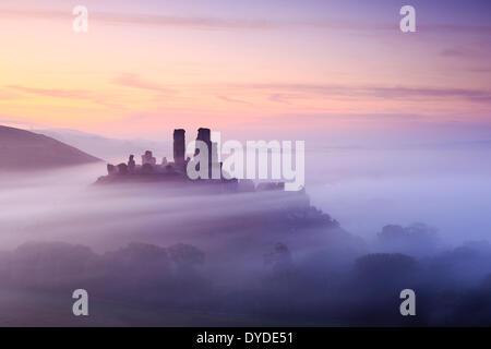 El castillo Corfe, en Dorset, en una mañana brumosa. Foto de stock