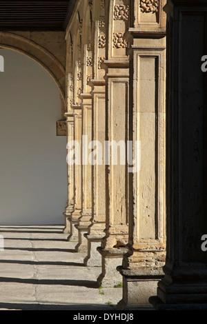 Galería claustro del Colegio Mayor de Fonseca (siglo xvi), en la histórica ciudad de Salamanc, Castilla y León, España.