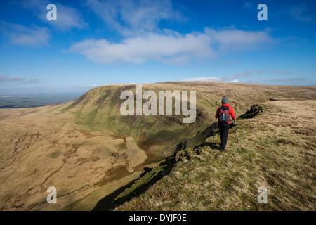 Excursionista hembra senderismo en cumbre de Brycheiniog Picws Du con ventilador en la distancia, la Montaña Negra, el Parque Nacional de Brecon Beacons, Gales