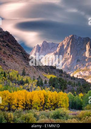 Árboles de Aspen en color en el otoño y las montañas alrededor de junio Lagos Loop.La parte oriental de Sierra Nevada Mountains, California