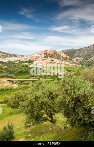 Vista de la cima del pueblo pintoresco de Moulay Idriss cerca de Volubilis en Marruecos.