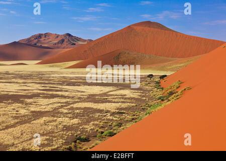 Namibia, Región Hardap Namib Naukluft, Parque Nacional, el desierto de Namib, en Sossusvlei, dunas de arena