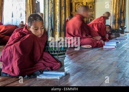 Los monjes budistas, principiante aprender y orando, Shwe Yaunghwe Kyaung Monasterio, Nyaung Shwe, Inle Lake, en el estado de Shan, Myanmar