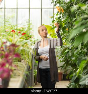 Floristerías mujer trabajando en el invernadero.