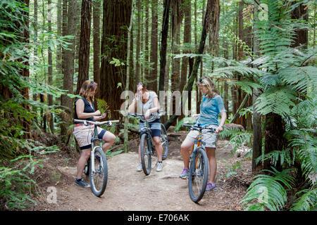 Tres mujeres adultas mid ciclistas de montaña utilizando smartphones en bosque