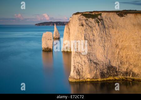 Amanecer en los blancos acantilados y rocas en Harry Studland, Isla de Purbeck, la Costa Jurásica, en Dorset, Inglaterra Foto de stock