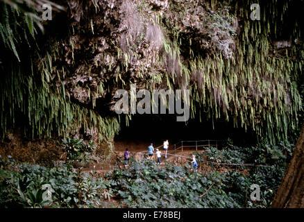 Fern Grotto (pre -2007),Kauai, Hawai