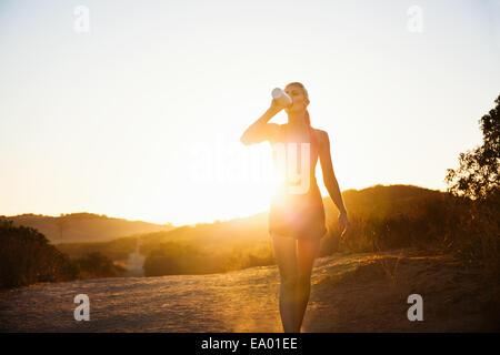 Emparejador hembra bebiendo en la luz del sol, Poway, CA, EE.UU.