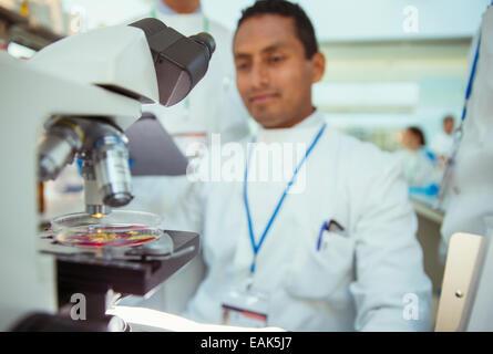 Científico con la muestra bajo el microscopio en laboratorio