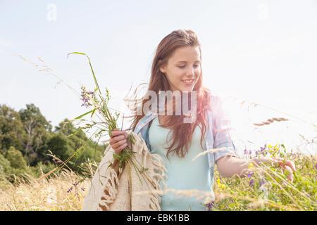 Mujer joven recogiendo flores frescas en el campo