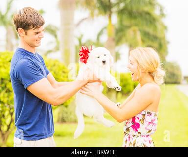 Ee.Uu., Florida, Júpiter, novio dando cachorro blanco con cinta bow novia presente