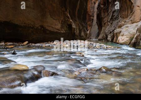Hermoso paisaje del estrecho en el Parque Nacional de Zion con la virgen río que fluye a través del cañón de ranura Foto de stock