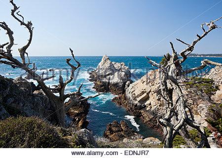 Sendero Costero de Monterey Bay Monterey Bay en Pacific Grove en ...