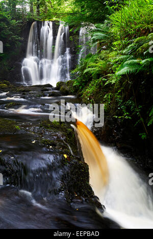 Ess-na-crub cascada en glenariff, Condado de Antrim de Irlanda del Norte