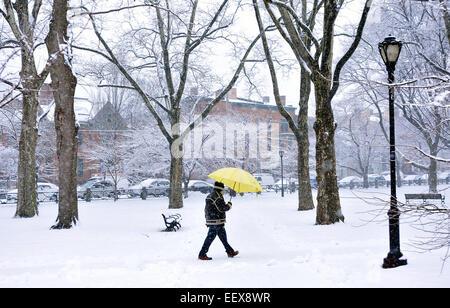 Un hombre camina a través de Wooster Square Park en New Haven durante el lunes la tormenta de nieve.